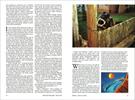 Published_Koalas_National-Geographic-Mag_09