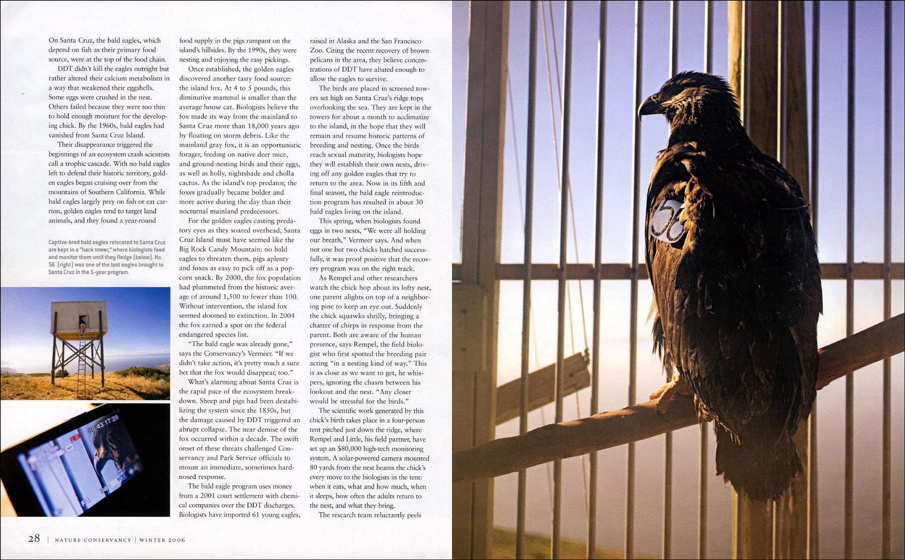 Published_Santa-Cruz-Island_Nature-Conservancy_06