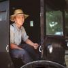 Bugy-Amish