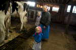 Dairy-Barn