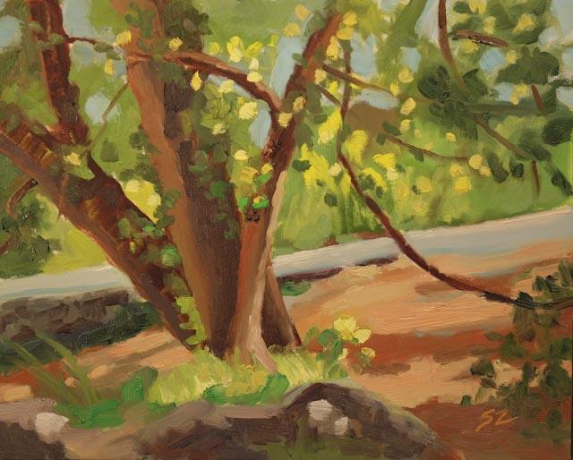8 x 10{quote} oil, plein air© S'zanne ReynoldsLake Travis, TexasPrivate Collection of the Artist