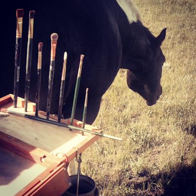 Zanne_horse