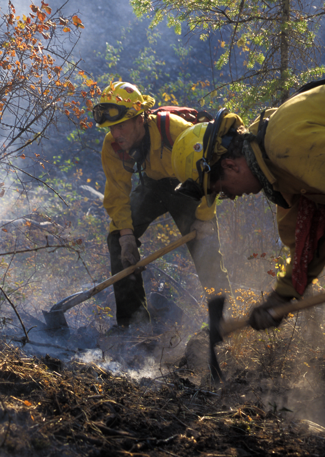 A fire crew from North Carolina cuts line and stamps out smoldering embers on the Bear Fire in western Montana.