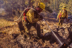 Firefighters mop up on the Bear Fire near Hamilton, Montana.