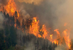 With almost no containment, the Bear Fire engulfs a mountainside above Skalkaho Creek near the Bitterroot Valley, Montana.