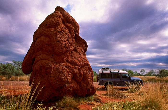 Termite mound along the Plenty Highway, Northern Territory, Australia.