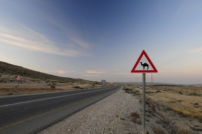 Camels crossing sign in Southern, Israel.