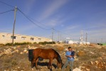 Israeli settler with his daughter and horse in Migron, a newly establised Israeli settlement housing 90 Jewish settlers.