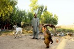 Monkey wallah and his monkey, Shahruk Khan in Rawalpindi, Pakistan