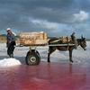 Salt Farm, Azerbaijan