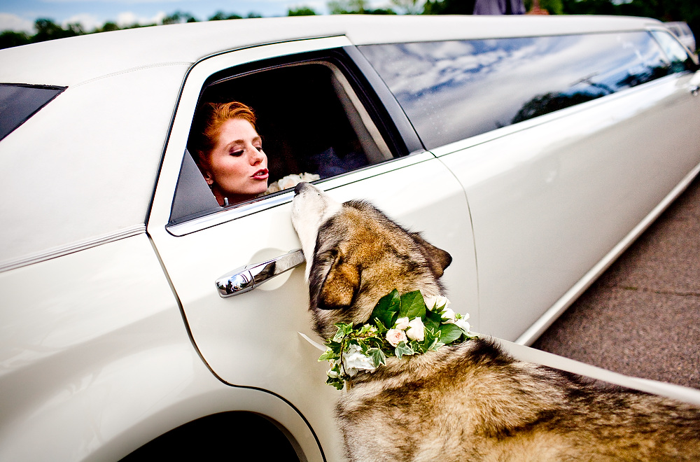 Best Santa Fe Wedding Photographer
