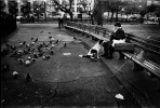 A man is feeding pigeons in Tompkins Sq Park, and his dog is waiting for the turn. New York, Dec, 1986.
