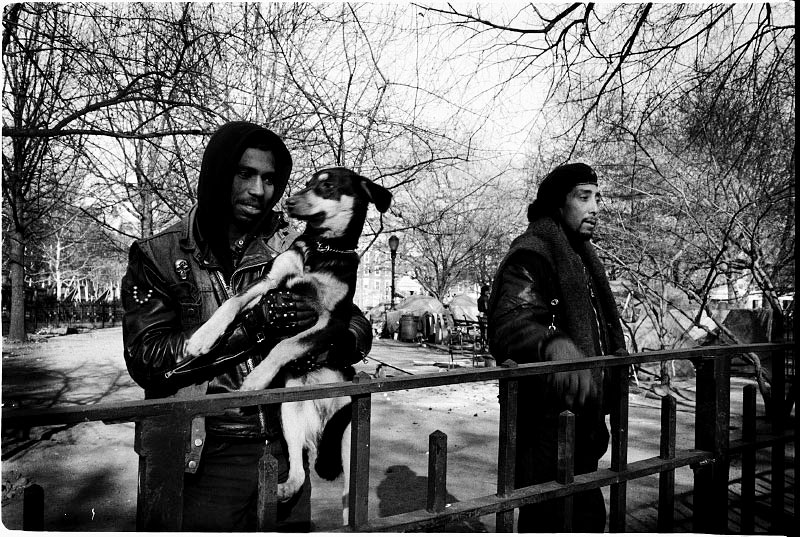 A scene of the park with homeless residents and a pet before the forceful eviction storm. Dec 1989.