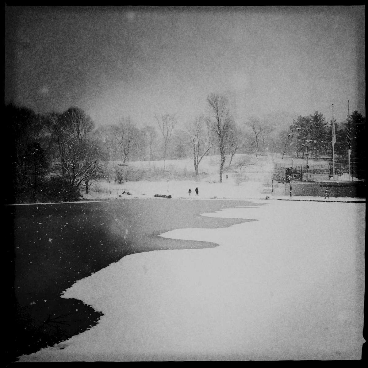 Winter at Harlem Pond in Central Park, Jan. 2015.