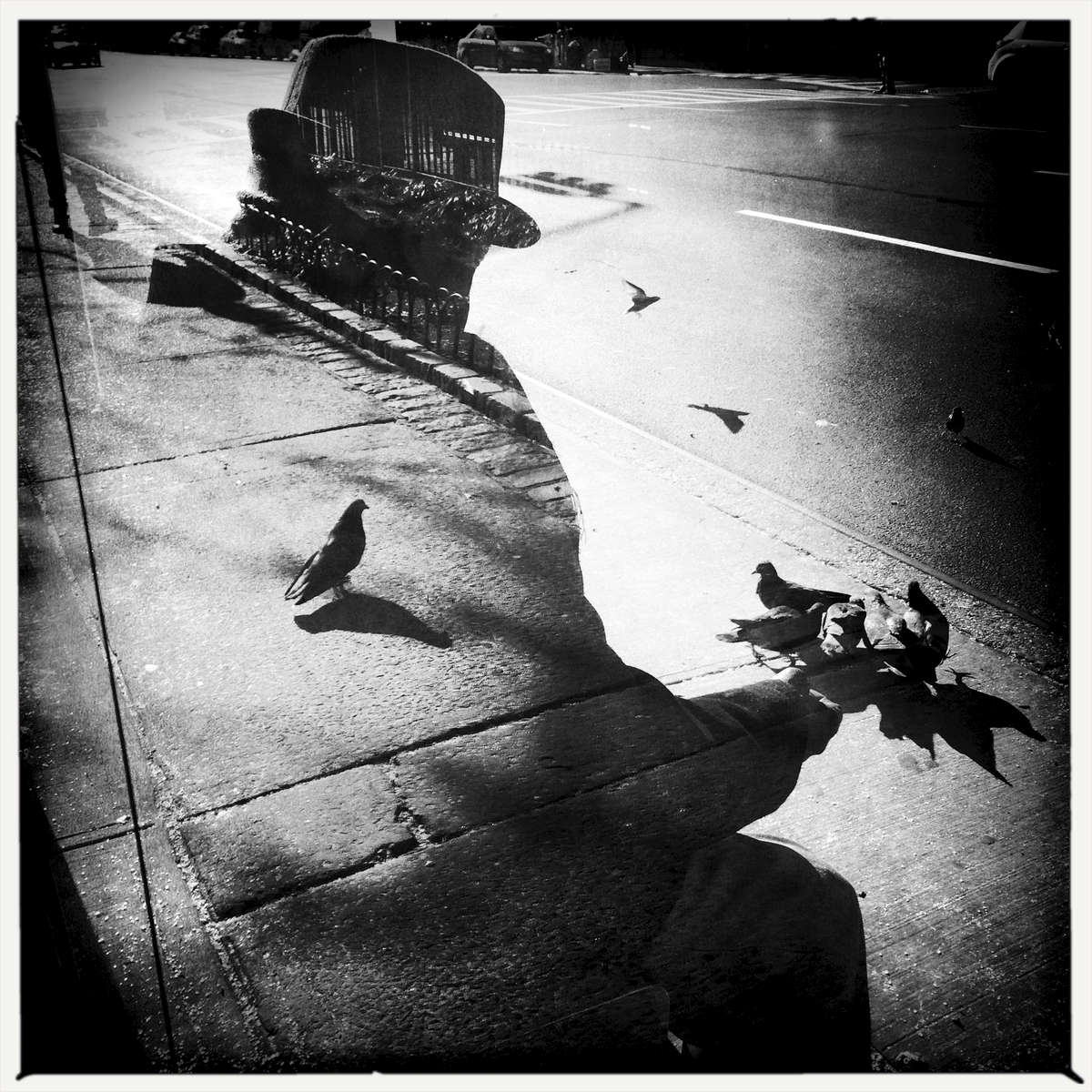 A man and Pigeons -- in the reflection, Upper West Side, Jan. 2015.