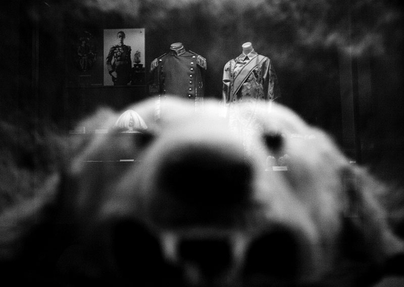 With the reflection of China's last emperor Puyi's photograph and his imperial uniforms, a hide of a polar bear remains at the former Imperial Palace of Manchukuo, or the Manchu State, where Qing and then Manchukuo emperor Puyi stayed as Japanese puppet from 1932 to 1945.