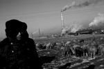 A shepherd stays near coal burning power plants at the suburb of an extremely frigid and remote coal industrial town of Jixi in China's North East where the majority used to be Manchu, Tungusic nomad people. Coal is a primary source for power, heating and cooking fuel in China in modern days, despite the environmental health hazards.China's North East was once called Manchuria. The region was at a crossroads that was manipulated in history, including the occupation by Russia and Japan. And now the area is facing upheavals due to the globalization with China's rapid economic growth itself, creating the gap between the rich and the poor and even more unemployment.