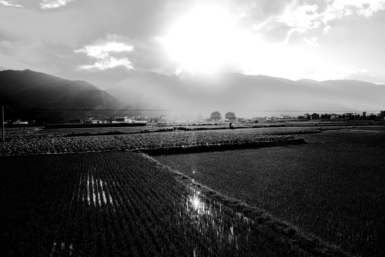 An daily farming field is seen near the city of Dali, Yunnan province, but it might be eroded by China's massive urbanization near future.