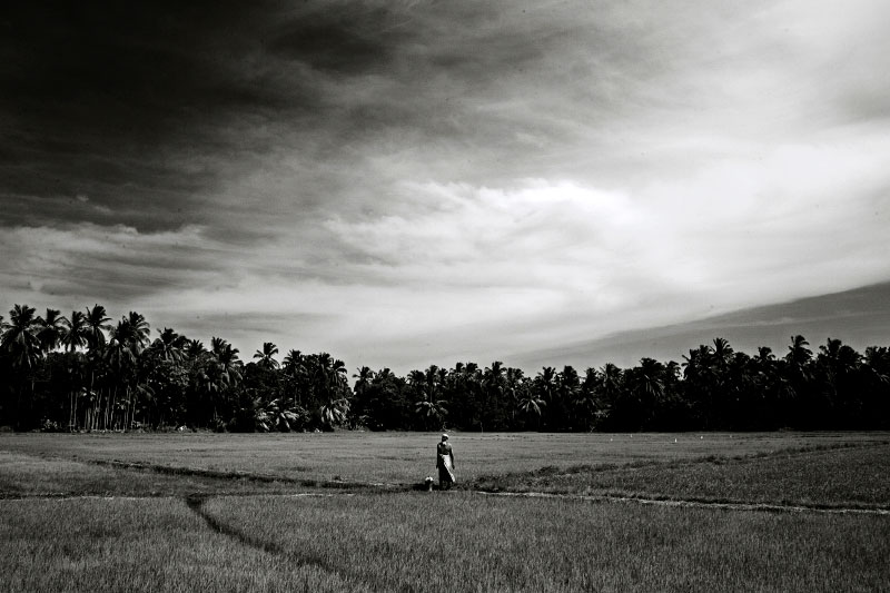 A Muslim farmer poses in the middle of farming land in Mutur where fresh fighting is escalating between the Sri Lankan government and LTTE rebel. Muslims are often a target by LTTE, although the group denies it. Mutur, Sri Lanka, June 18, 2006.