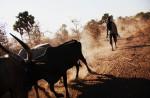 sudan_nomads_19
