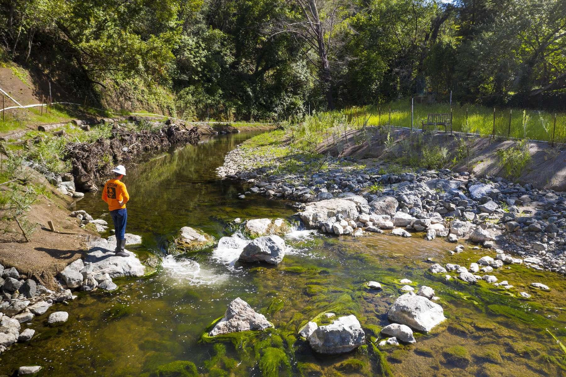 Stanford Lagunita Dam Removal