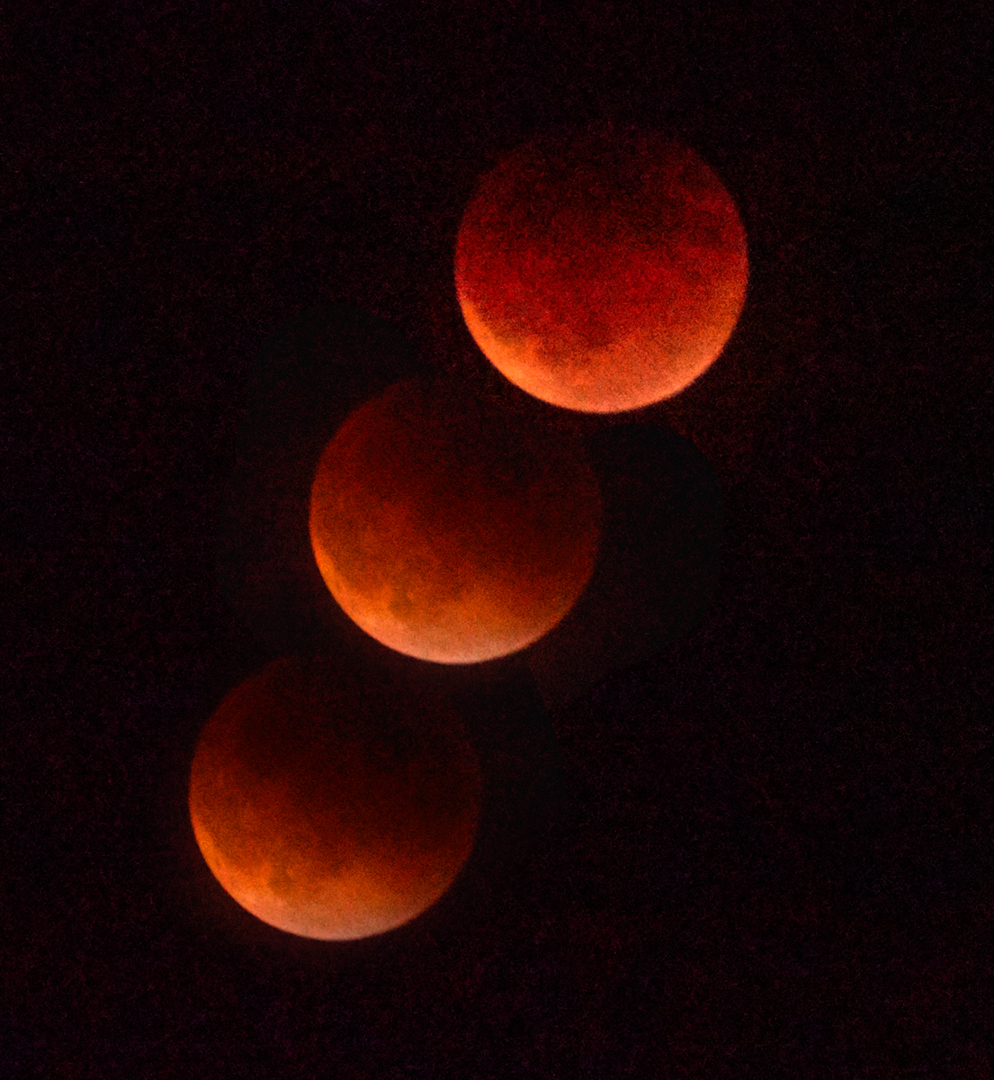 A portion of the Blood Moon Eclipse