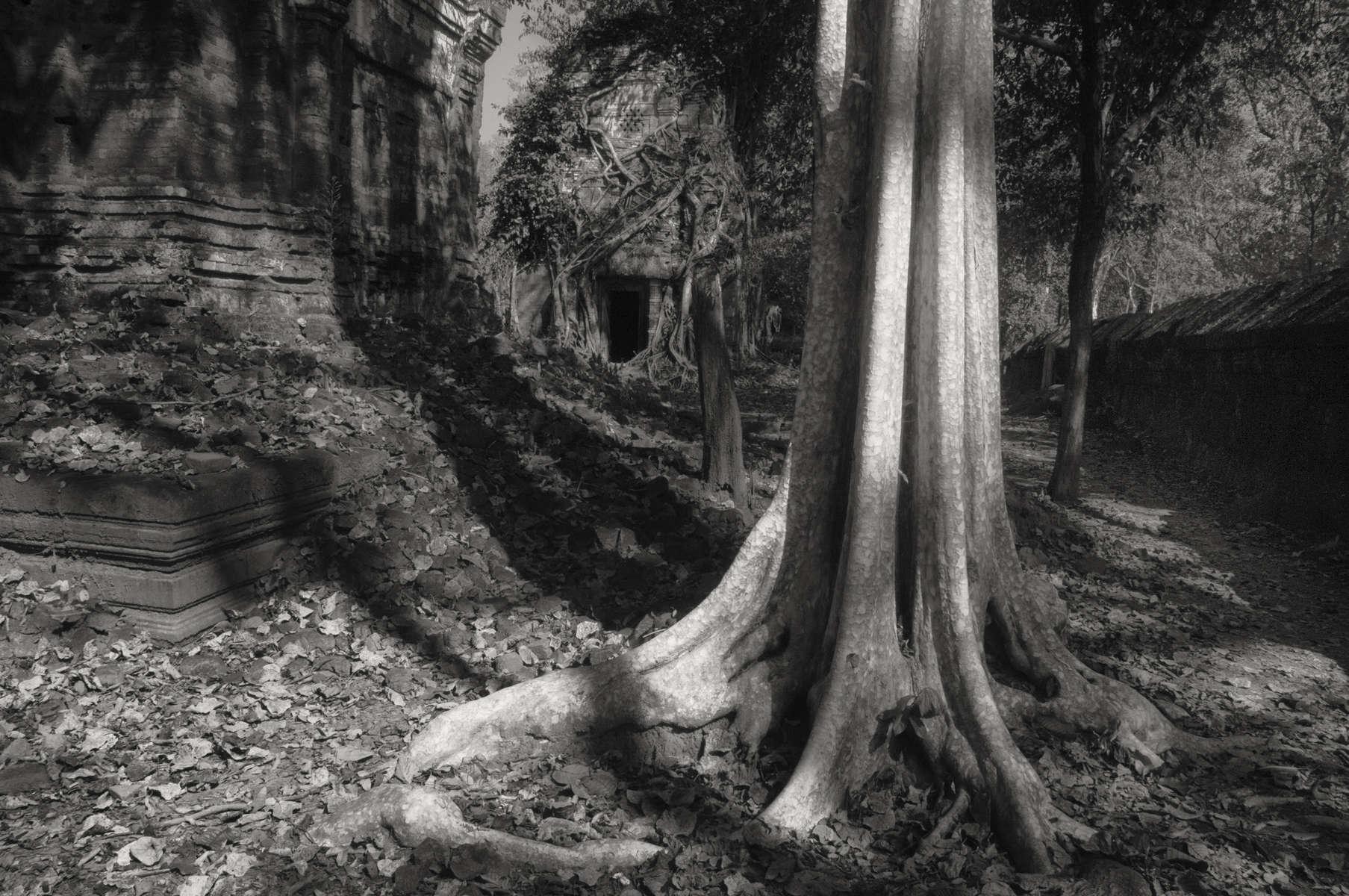 cambodia-375
