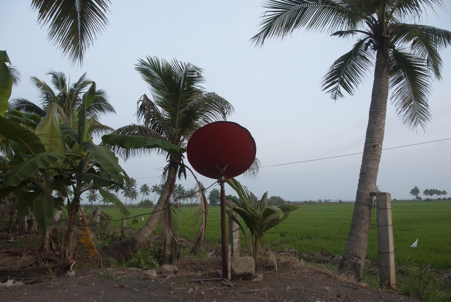 india_-4
