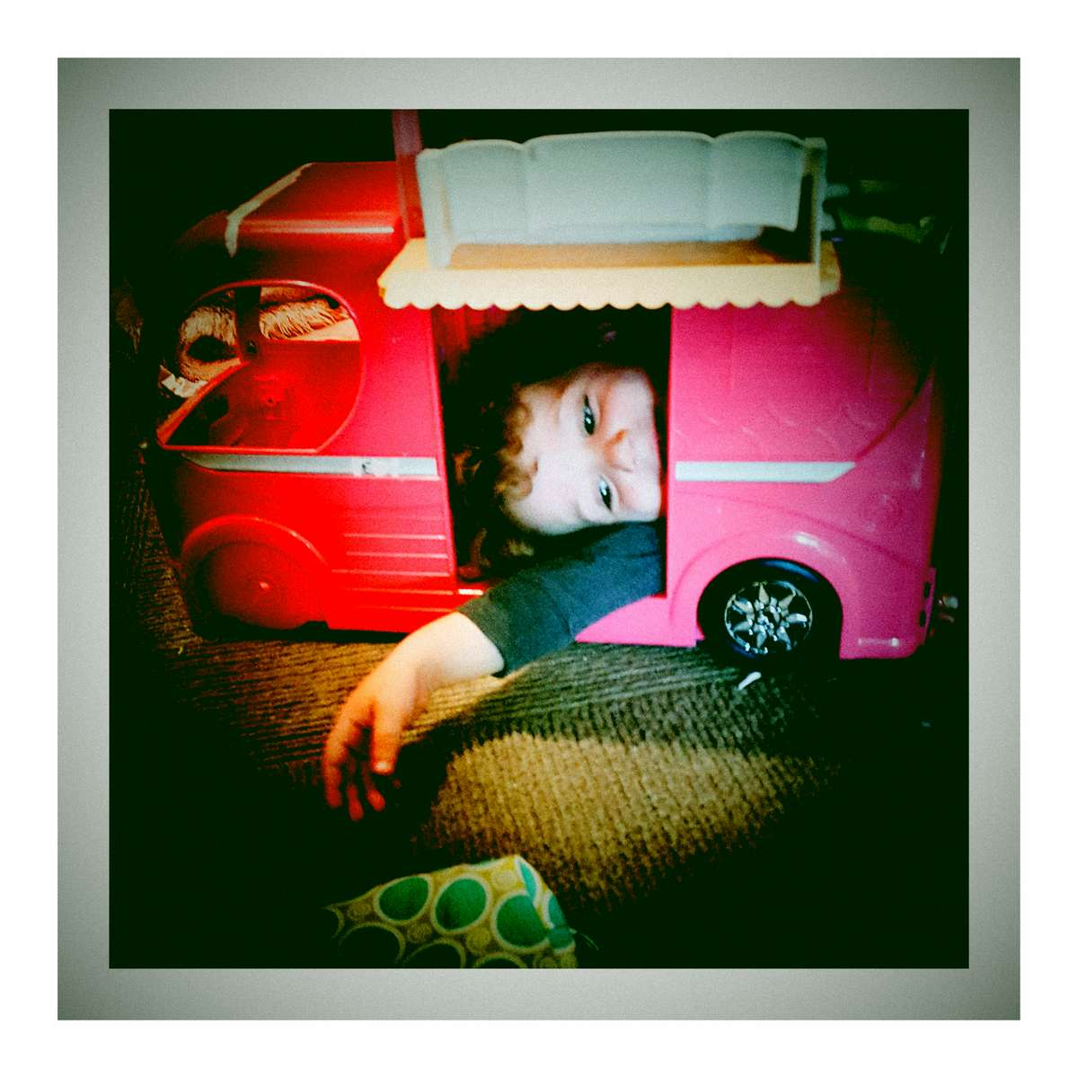 Luka got his head stuck in the Barbie RV. August 2017.