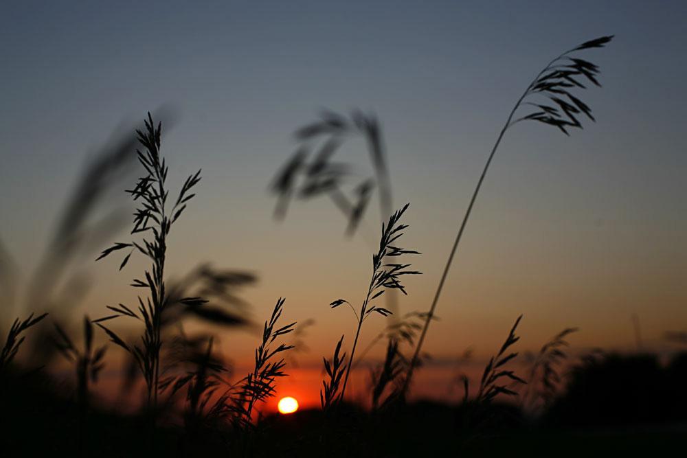 Sunrise in northeast Nebraska