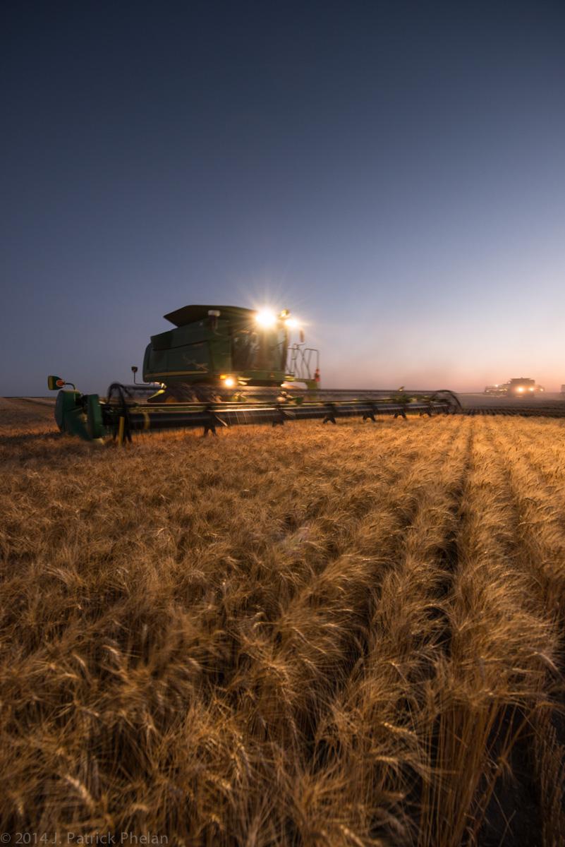 Wheat harvest in the Nebraska Panhandle.