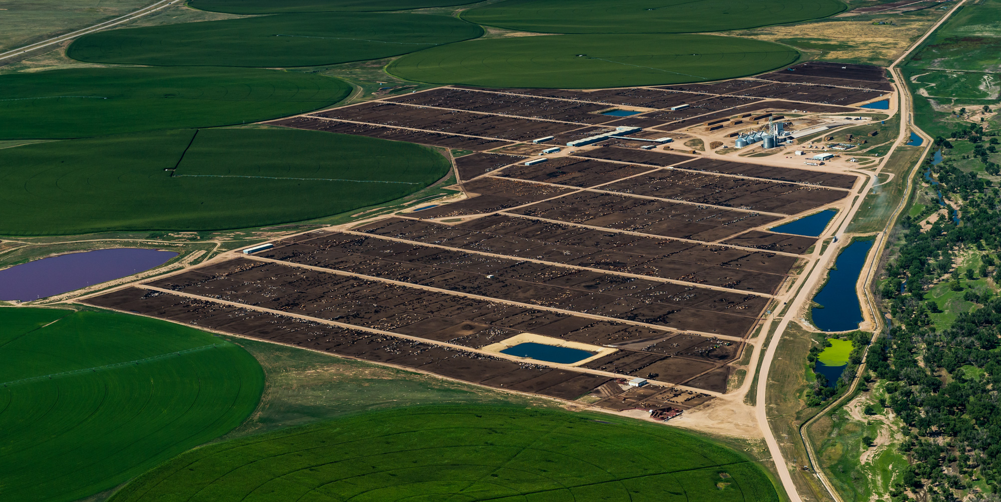 Aerial view of the Dinklage Feed Yards at the Proctor, Colorado facility.