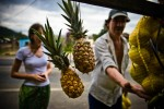 On her way to Isla do Mel, a tourist stops to by a bag of passion fruit from a roadside fruit stand in Morretes.