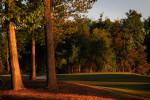 GolfCourses_03