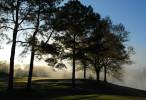 GolfCourses_15