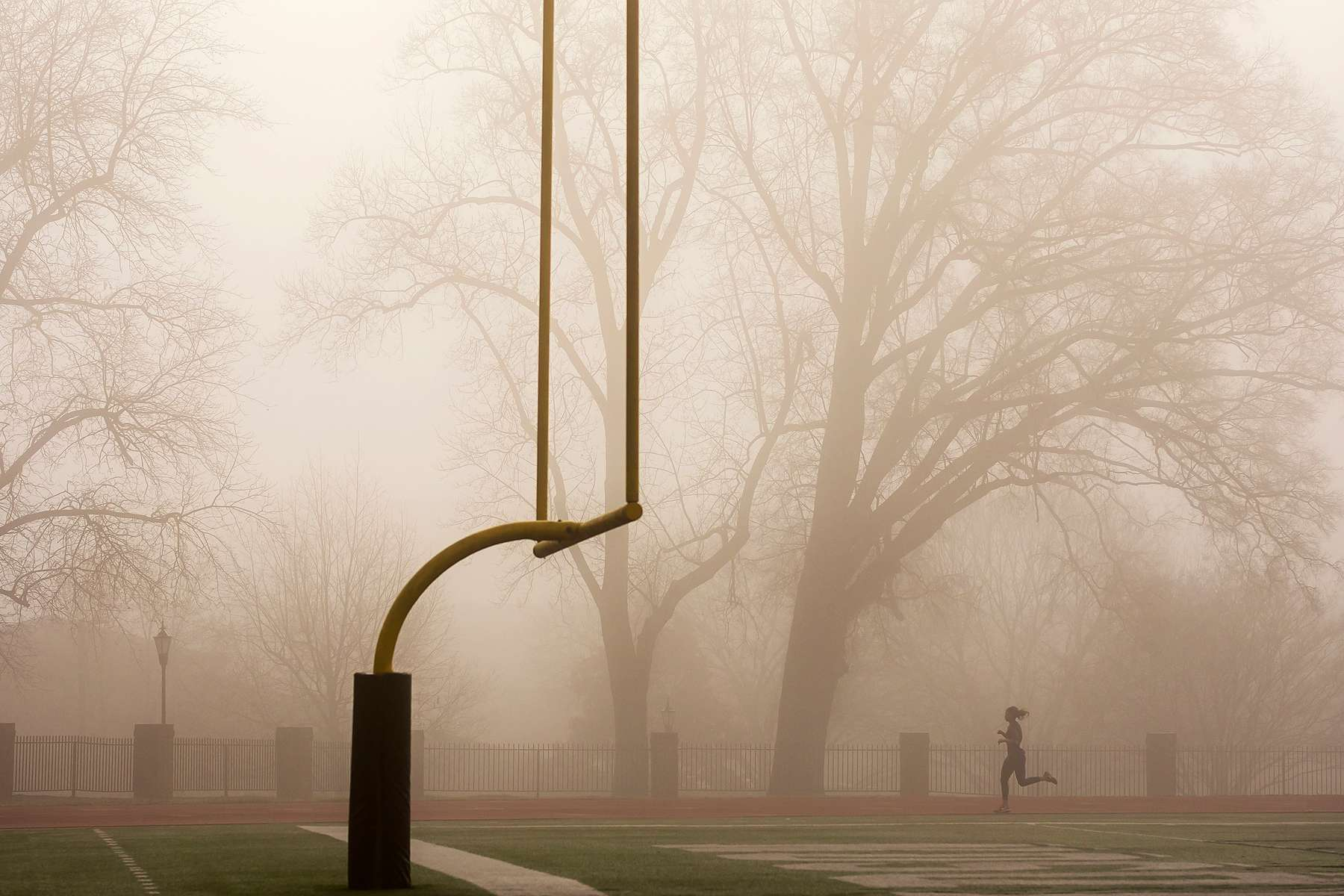 Foggy morning on campus