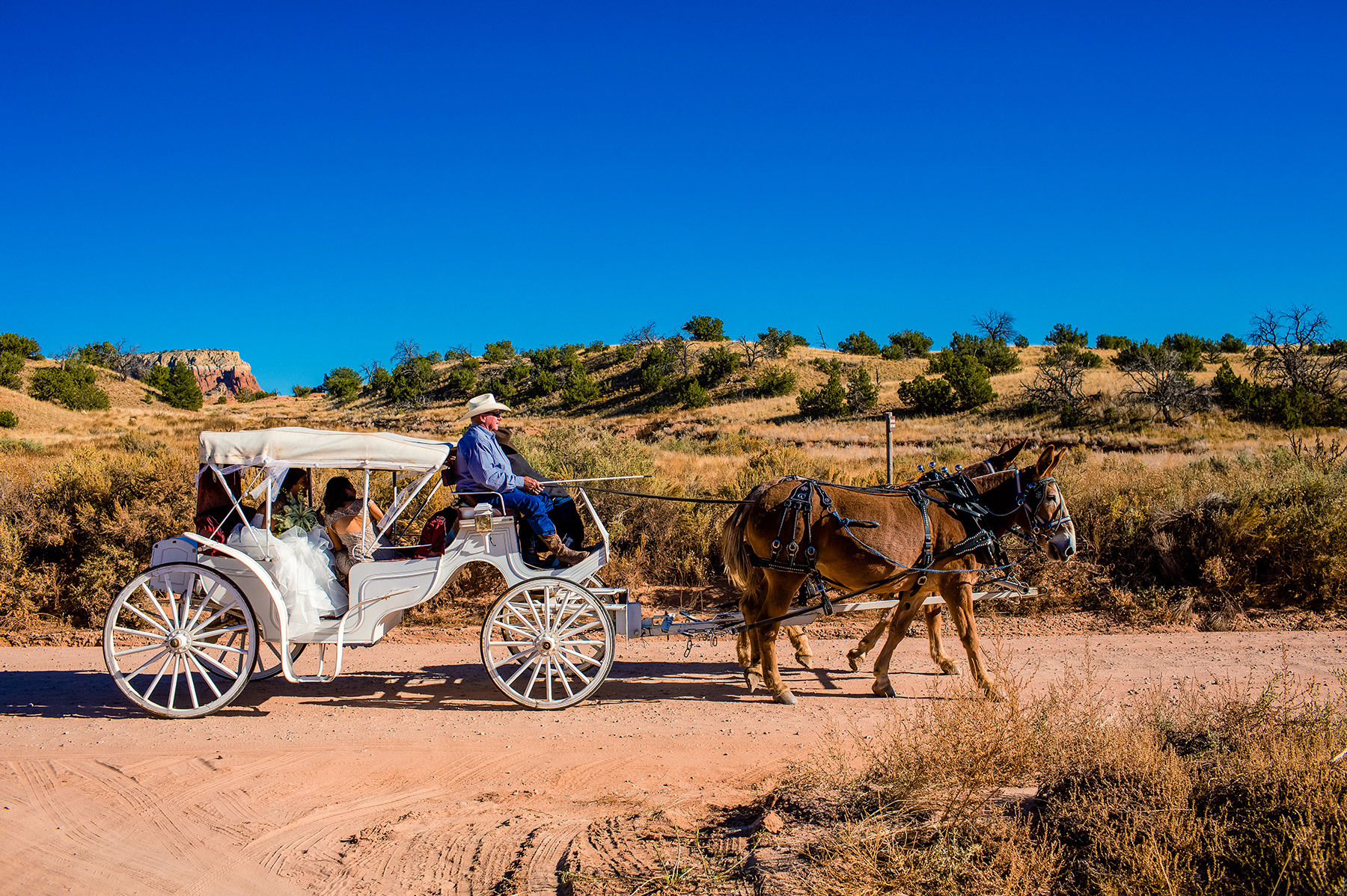 chelsea-and-brandon-ghost-ranch-wedding-2015-1006