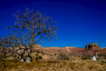 chelsea-and-brandon-ghost-ranch-wedding-2015-1020