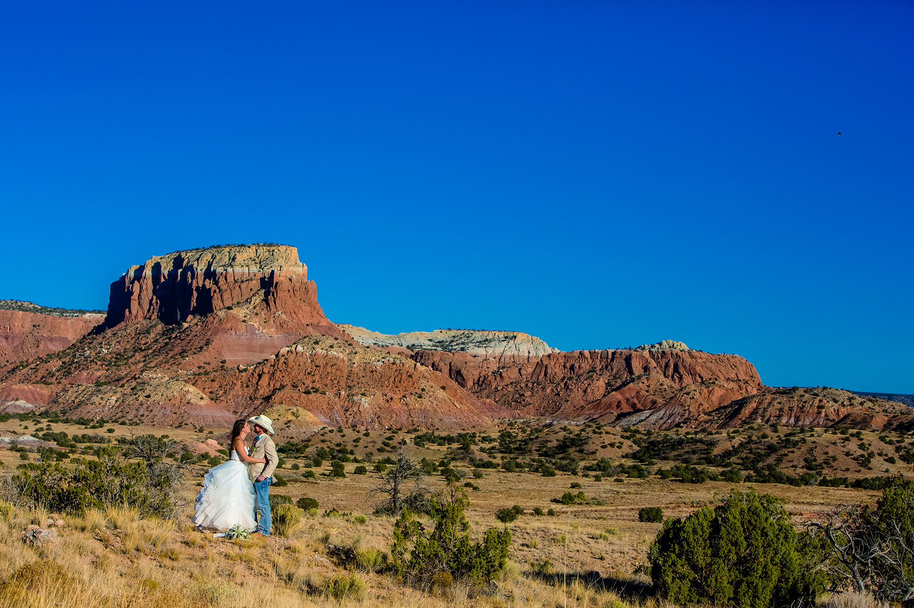 chelsea-and-brandon-ghost-ranch-wedding-2015-1022