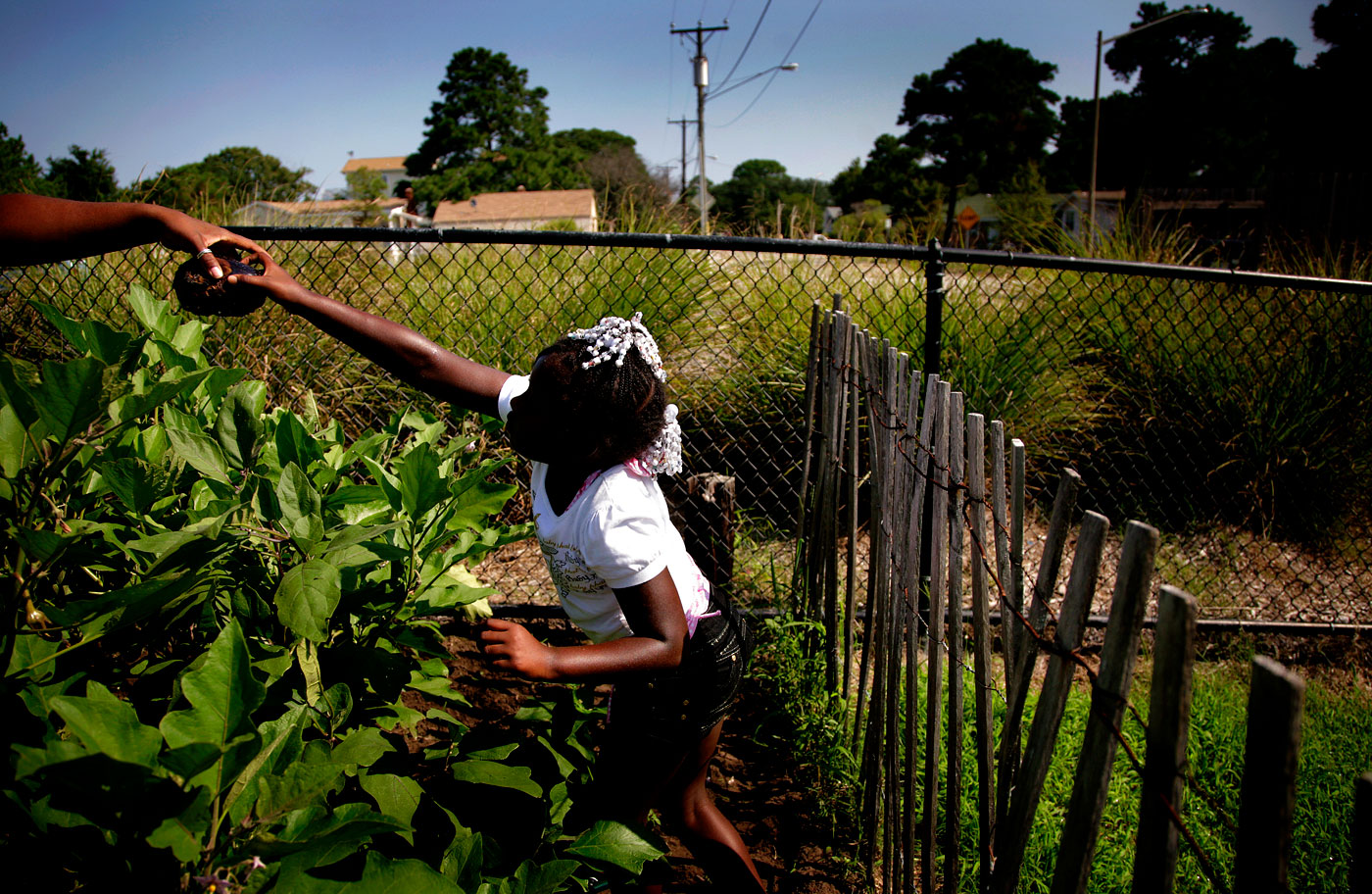 Nya in the garden, 2009Nya Tolbert, 8, picks vegetables from the East Ocean View Community Center Children's Garden.
