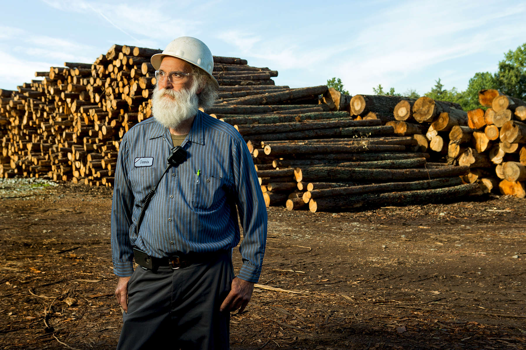 A long-time employee of a pallet manufacturing plant pauses to have his photo taken in front stacked logs . The man has a thick white beard and is wearing safety glasses and a hard hat (PPE/Personal protective equipment). At their highest, the logs are stacked about 30 logs high.
