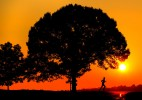 Sunrise_Runner001