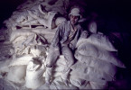 A worker in a flour mill in Jakarta, Indonesia takes a break.