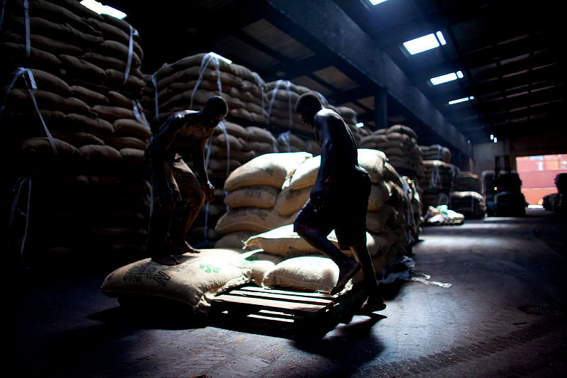 men pile sacks of cocoa beans at a warehouse on the docks of san pedro, ivory coast
