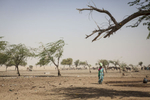 Diffa, Niger- A woman walks through Kindjandi IDP camp in Diffa, Niger. (Jane Hahn)