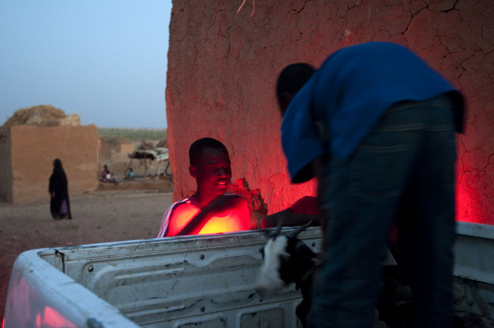 Young boys unload a goat from a vehicle in a village in Gorgol provinde. A mass exodus of men to urban areas in search of work has left only women, children and the elderly to work the land and care for livestock in rural villages.Djadjibiné Chorfa, Mauritania.Photo © J.B. Russell