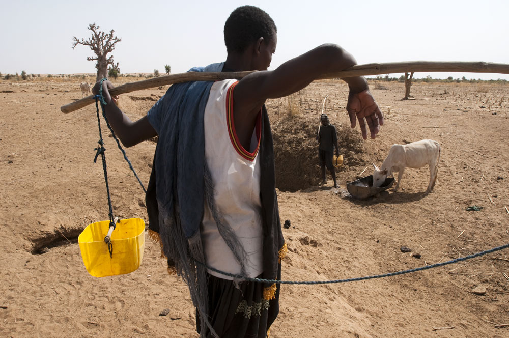 In the dry season, shepherds get water from holes dug in dry wadi beds for their animals to drink as well as for their own consumption.Bouguirbe Maure, Mauritania.Photo © J.B. Russell