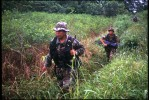 Special narcotics forces (UMOPAR) pass coca crops on a jungle patrol in search of cocaine producing labs.  El Chapare, in Bolivia's central lowlands, is the country's principle coca producing region and the heart of the war on drugs.El Chapare, Bolivia.Photo © J.B. Russell
