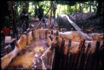 Special narcotics forces (UMOPAR) on a jungle patrol discover a cocaine paste lab. The owners had already fled, but the lab will be destroyed. El Chapare, in Bolivia's central lowlands, is the country's principle coca producing region and the heart of the war on drugs.El Chapare, Bolivia.Photo © J.B. Russell