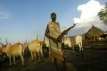 A Mundari herdsmen guards livestock with a Kalashnikov at a cattle camp in Central Equatoria Province. Inter-tribal conflicts and cattle russling in the northern part of the province forced the tribe to move south in search of safe grazing land.Kuruki, South Sudan.Photo © J.B. Russell